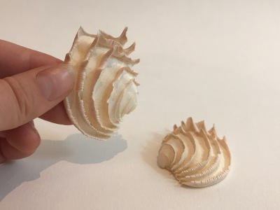 Wedding Cake Shell